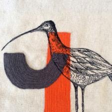 orange-curlew